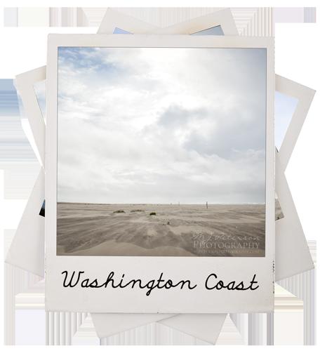 Washington Coast Photography by MJ Peterson Photography